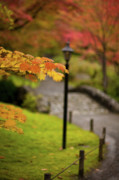 Fall Leaves Posters - Fall Serenity Poster by Mike Reid