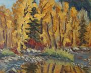 Shimmering Leaves Posters - Fall Splendor Elk River Steamboat Springs Colorado Poster by Zanobia Shalks