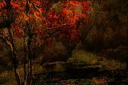 Fall Landscape Digital Art - Fall woods by Jeff Burgess