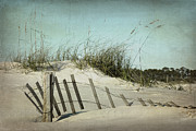 Sea Oats Metal Prints - Fallen Metal Print by Joan McCool