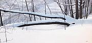 Snow Landscapes Paintings - Fallen Winter Tree by Kenneth M  Kirsch