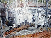 Piedmont Paintings - Falling Creek in Piedmont Refuge by Terry Forrest
