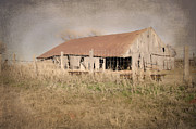 Old Barns Posters - Falling Down Poster by Betty LaRue