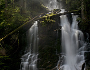 Falling Water Photos - Falls Golden Light by Mike Reid