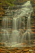 Pa State Parks Photos - Falls In The Forest by Adam Jewell