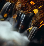 Falls Of Autumn Print by Steven Milner