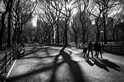 Winter Photos Prints - Family at Central Park in New York City Print by Ilker Goksen