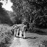 Mother Of Four Framed Prints - Family Carrying Butterfly Nets, Rear View (b&w) Framed Print by Hulton Archive