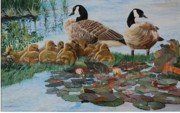 Canadian Geese Paintings - Family Gathering by Santo De Vita