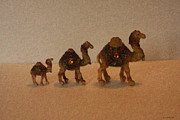 Camel Digital Art Originals - Family of camels by Antonio Brito