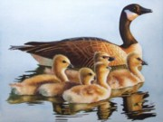 Geese Paintings - Family Time by Greg Halom