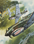 Sharks Painting Posters - Famous Aircraft and their Pilots Poster by Wilf Hardy