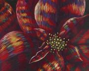 Fanciful Holiday Poinsettia Print by Shawna Elliott