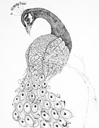Peacock Drawings Metal Prints - Fanciful Metal Print by Sarah Zilbershteyn
