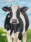Cows Acrylic Prints - Fancy Fiona Acrylic Print by Laura Carey