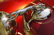 Greyhound Photos - Fancy Ford Chrome Hood Ornament by Mick Anderson
