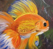 Barbara Haviland Framed Prints - Fancy Goldfish Framed Print by Barbara Haviland
