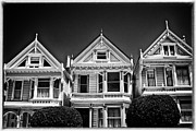 Alamo Square Framed Prints - Fancy Ladies - black and white Framed Print by Hideaki Sakurai