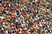 Yankee Stadium Bleachers Photos - Fans by Mitch Cat