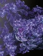 Fractal Flame Prints - Fantasized Florals Print by David Lane