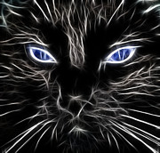 Black Cat Fantasy Framed Prints - Fantasy Black Cat Blue Eyes Framed Print by Paul Ward