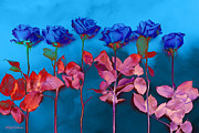 Roses Digital Art Metal Prints - Fantasy Blues Metal Print by Michelle Wiarda
