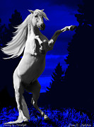 Equine Posters - Fantasy by Moonlight Poster by Diane C Nicholson