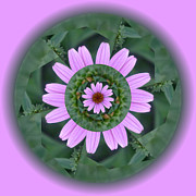 Linda Pope Metal Prints - Fantasy Flower Metal Print by Linda Pope