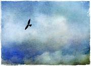 Far Above Print by Judi Bagwell