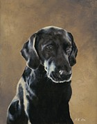 Retrievers Paintings - Fargo - Black Lab by Tracy Hegarty
