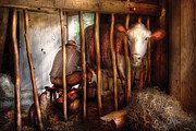 Amish Farmer Photos - Farm - Cow - Milking Mabel by Mike Savad