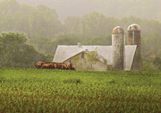 Farm - Farmer - Amish Farming Print by Mike Savad