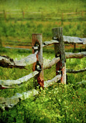 Farm Scenes Posters - Farm - Fence - The old fence post  Poster by Mike Savad