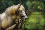 Green Pasture Posters - Farm - Horse - White Stallion Poster by Mike Savad