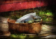 Basket Prints - Farm - Laundry  Print by Mike Savad