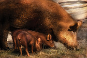 Little Head Art - Farm - Pig - Family Bonds by Mike Savad