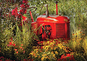 Reds Prints - Farm - Tractor - A pony grazing Print by Mike Savad