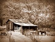 Farm And Barn Print by Marty Koch