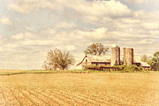 Farm Buildings Prints - Farm and Fields  Print by Olivier Le Queinec