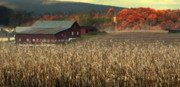 Chuck Kuhn Prints - Farm Fall Colors Print by Chuck Kuhn