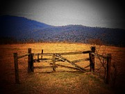 Virginia Photos - Farm Gate by Joyce  Kimble Smith