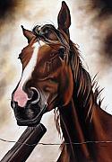 Ilse Kleyn - Farm Horse