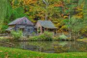 Fall Leaves Prints - Farm in Woods Print by William Jobes