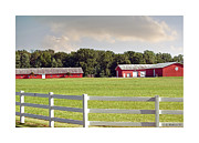 Sheds Prints - Farm Pasture Print by Brian Wallace