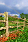 Wooden Fence Posters - Farm Rainbow Poster by Thomas R Fletcher