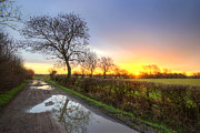 Puddle Prints - Farm Road Sunrise Print by Yhun Suarez