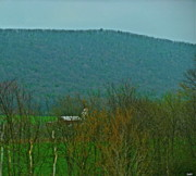 Tranquil Mountaintop Art - Farm Tucked Mountaintop  by Debra     Vatalaro