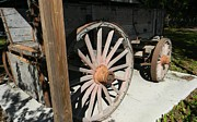 Wagon Wheels Originals - Farm Wagon by Warren Thompson