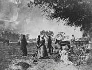 Horse And Wagon Prints - Farm Workers Print by Photo Researchers
