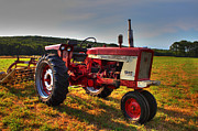Red Tractors Framed Prints - Farmall Tractor in The Sunlight Framed Print by Andrew Pacheco